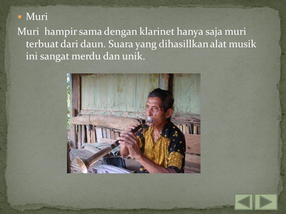 Muri Muri hampir sama dengan klarinet hanya saja muri terbuat dari daun. Suara yang dihasillkan alat musik ini sangat merdu dan unik.