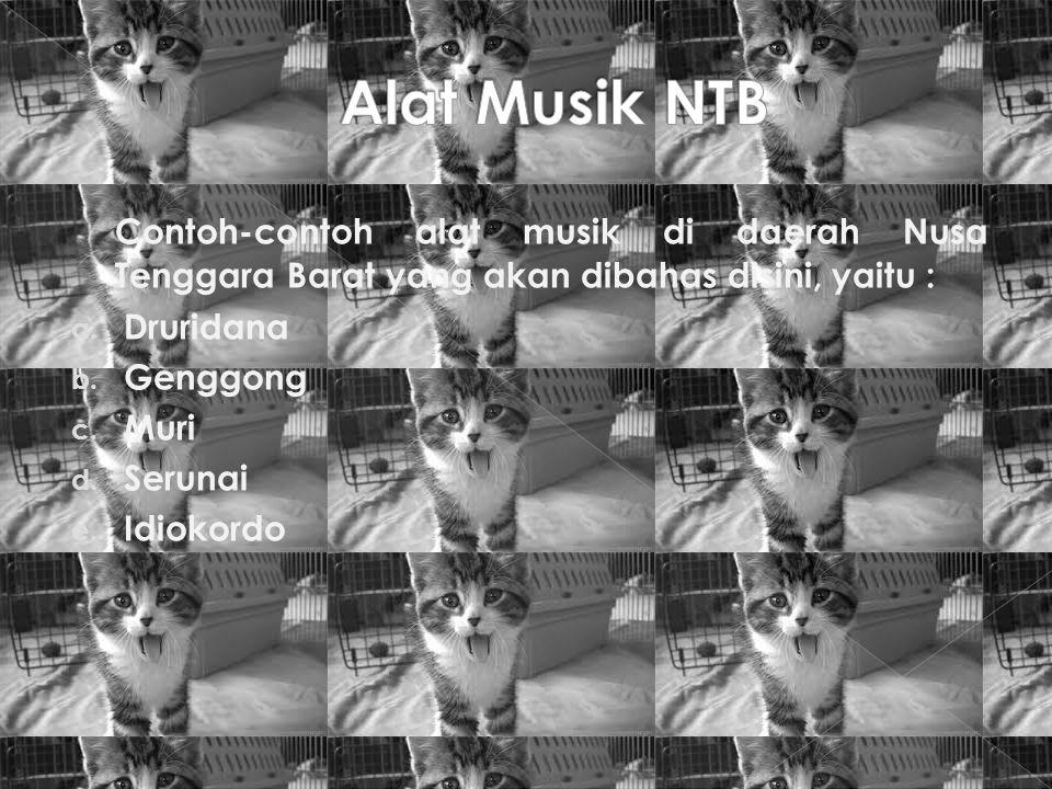Contoh-contoh alat musik di daerah Nusa Tenggara Barat yang akan dibahas disini, yaitu : a. Druridana b. Genggong c. Muri d. Serunai e. Idiokordo