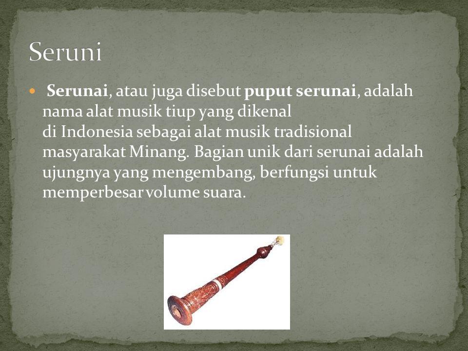 Serunai, atau juga disebut puput serunai, adalah nama alat musik tiup yang dikenal di Indonesia sebagai alat musik tradisional masyarakat Minang. Bagi