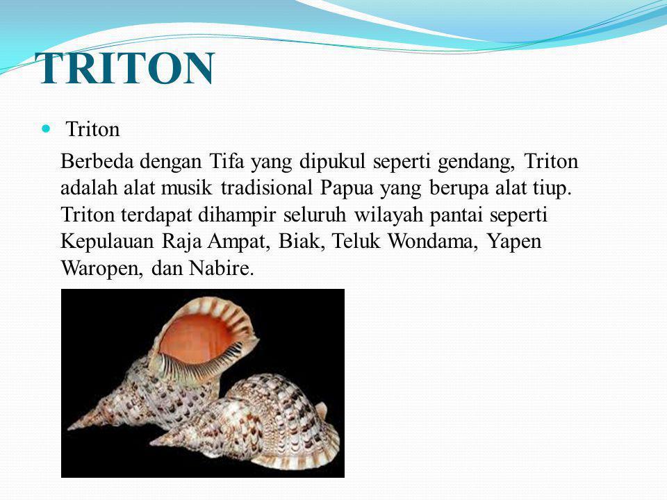 TRITON Triton Berbeda dengan Tifa yang dipukul seperti gendang, Triton adalah alat musik tradisional Papua yang berupa alat tiup. Triton terdapat diha