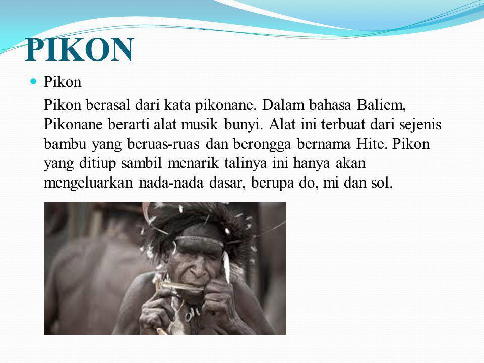 PIKON Pikon Pikon berasal dari kata pikonane. Dalam bahasa Baliem, Pikonane berarti alat musik bunyi. Alat ini terbuat dari sejenis bambu yang beruas-