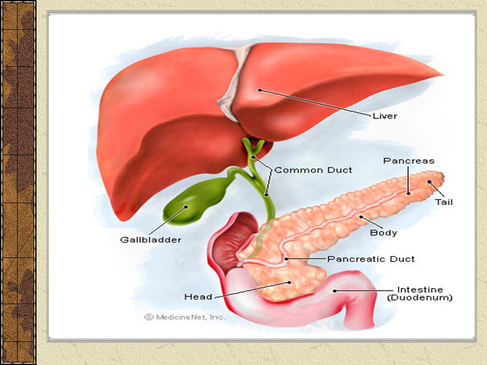 Kriteria Ranson Menilai pada saat pasien masuk/dirawat di rumah sakit: umur > 55 tahun; lekosit dalam darah > 16.000/ml; gula darah > 200 mg/dL; LDH > 350 IU/L; dan AST > 200 IU/L.