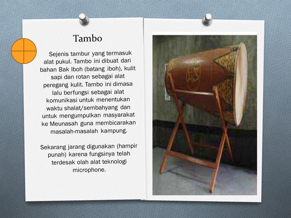 Tambo Sejenis tambur yang termasuk alat pukul. Tambo ini dibuat dari bahan Bak Iboh (batang iboh), kulit sapi dan rotan sebagai alat peregang kulit. T
