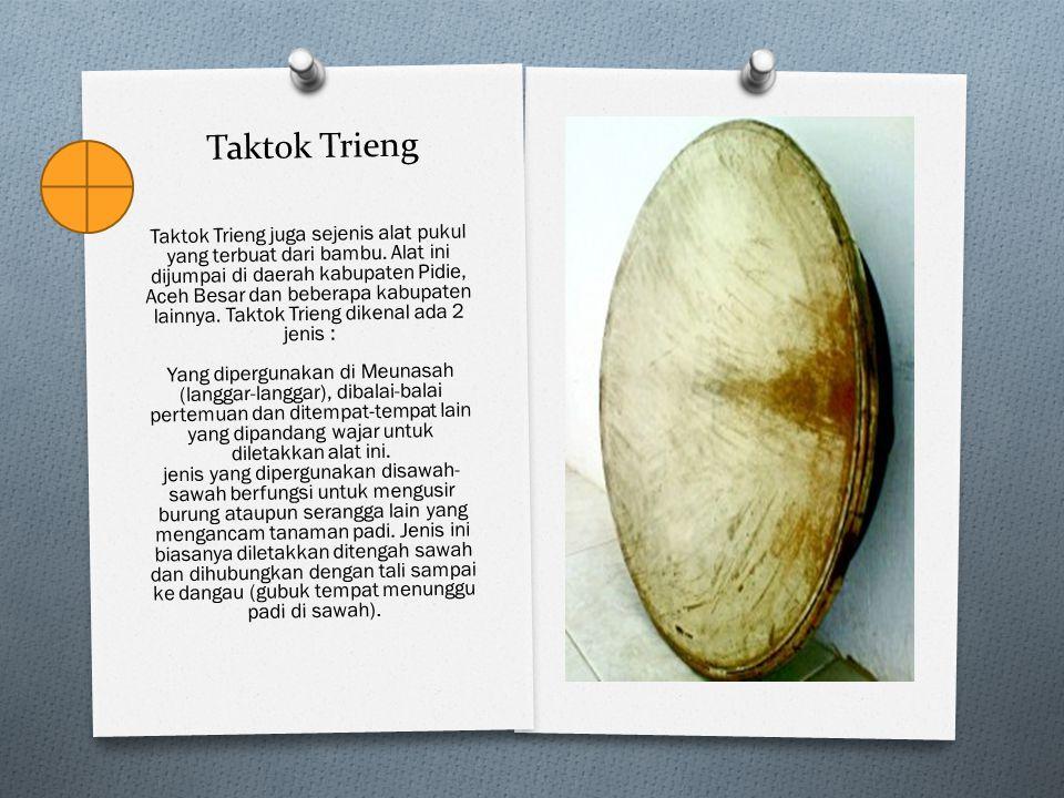 Taktok Trieng Taktok Trieng juga sejenis alat pukul yang terbuat dari bambu. Alat ini dijumpai di daerah kabupaten Pidie, Aceh Besar dan beberapa kabu