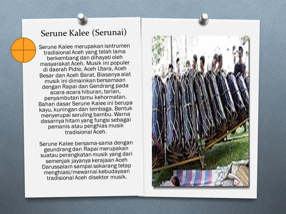 Serune Kalee (Serunai) Serune Kalee merupakan isntrumen tradisional Aceh yang telah lama berkembang dan dihayati oleh masyarakat Aceh. Musik ini popul