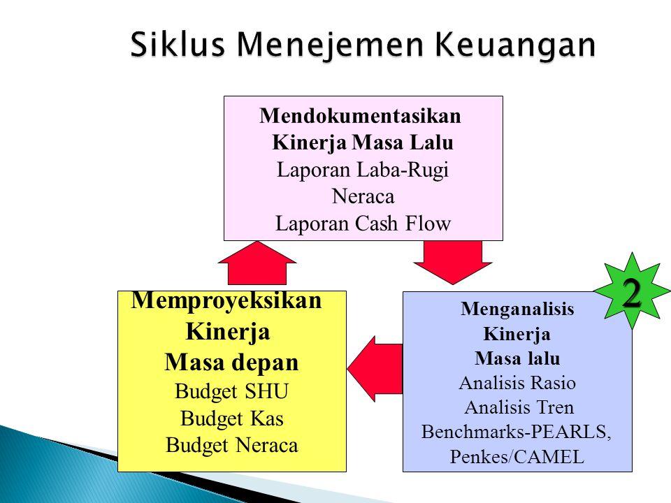 Siklus Menejemen Keuangan Menganalisis Kinerja Masa lalu Analisis Rasio Analisis Tren Benchmarks-PEARLS, Penkes/CAMEL Mendokumentasikan Kinerja Masa L