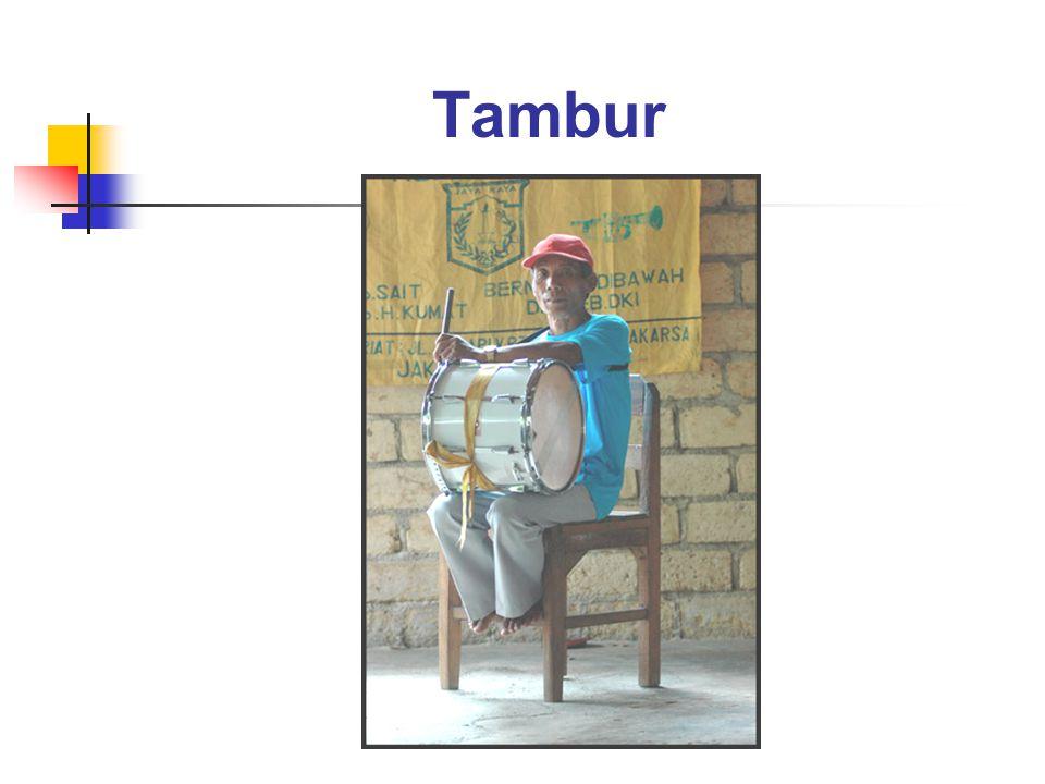 Tambur