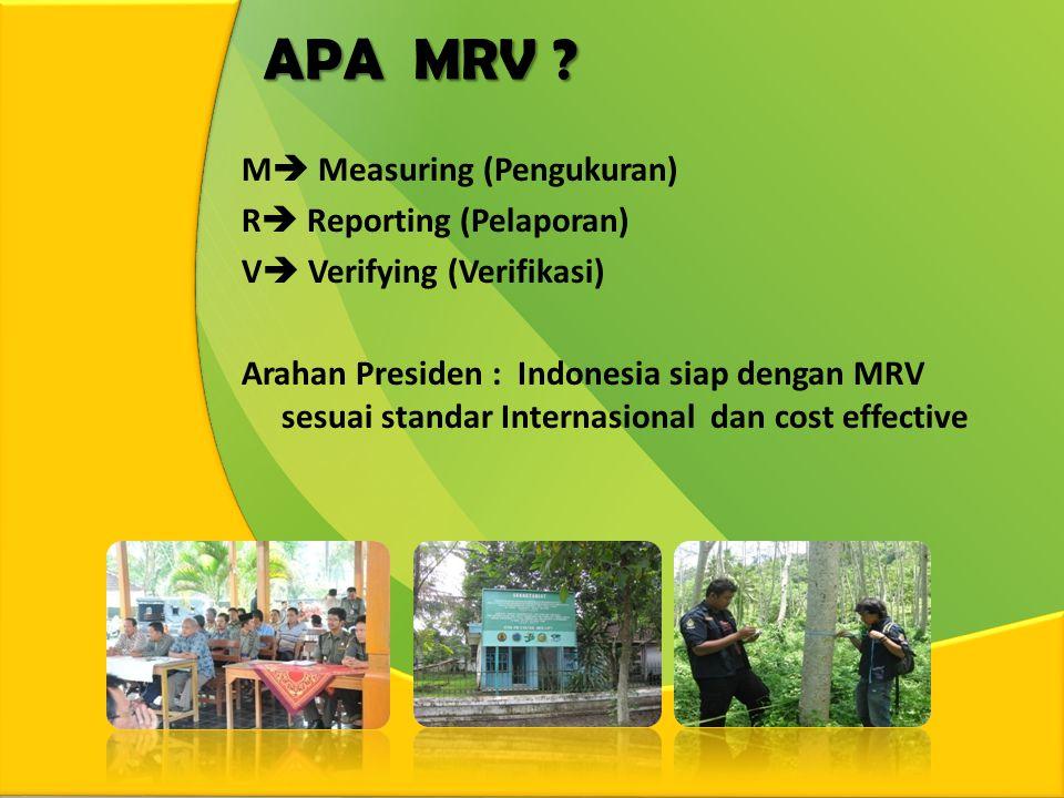 APA MRV .