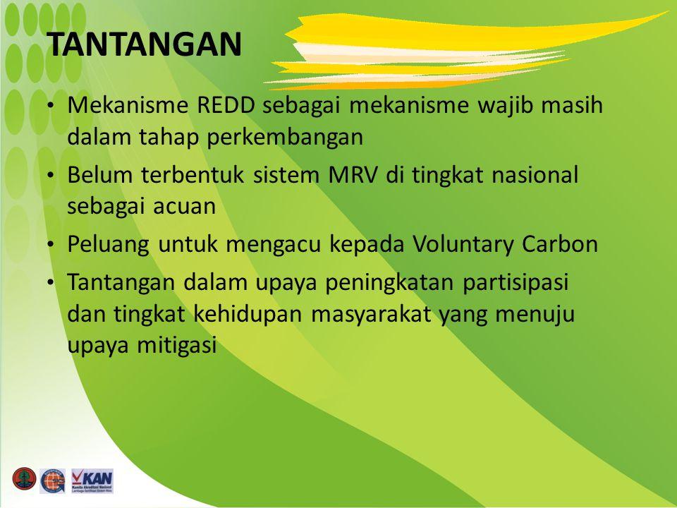 TANTANGAN Mekanisme REDD sebagai mekanisme wajib masih dalam tahap perkembangan Belum terbentuk sistem MRV di tingkat nasional sebagai acuan Peluang untuk mengacu kepada Voluntary Carbon Tantangan dalam upaya peningkatan partisipasi dan tingkat kehidupan masyarakat yang menuju upaya mitigasi