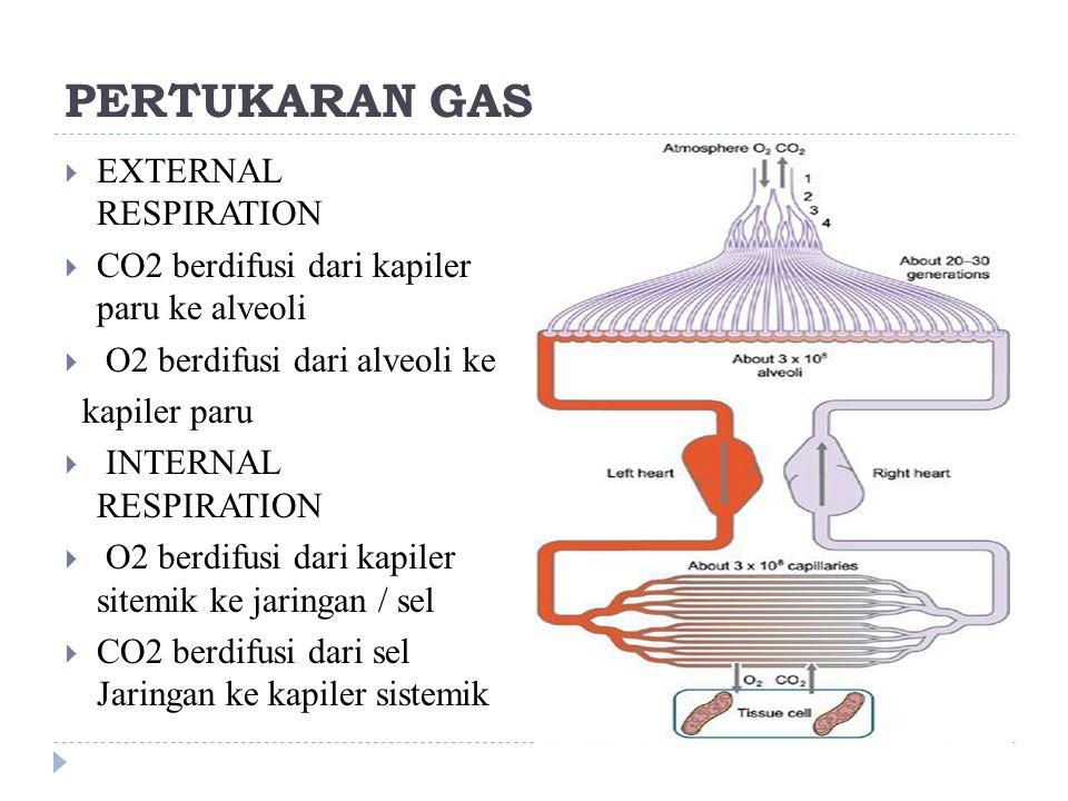 Respirasi eksterna : tekanan parsial  Tekanan parsial gas didalam alveoli berbeda dengan yang ada di atm  PO2 = 104 – 159  PCO2 = 40 – 0,3  PH2O = 47 – 3,5  Disebabkan karena :  1.