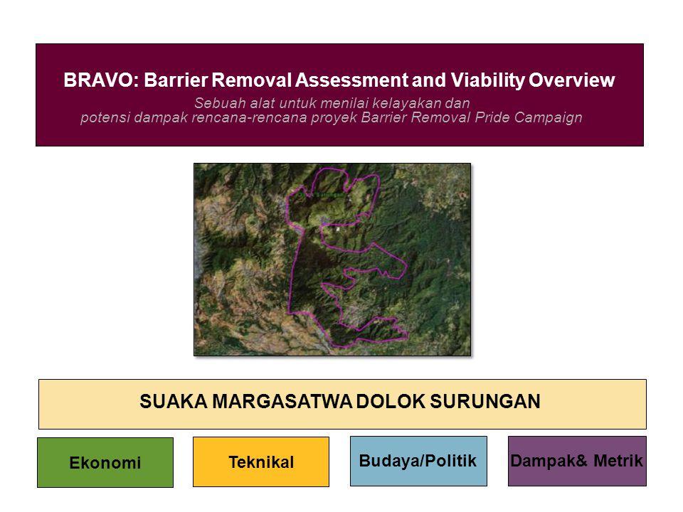 Sebuah alat untuk menilai kelayakan dan potensi dampak rencana-rencana proyek Barrier Removal Pride Campaign BRAVO: Barrier Removal Assessment and Via