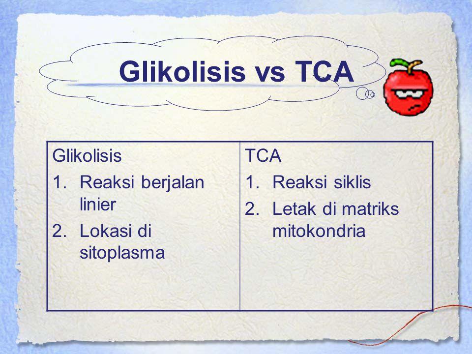 Glikolisis vs TCA Glikolisis 1.Reaksi berjalan linier 2.Lokasi di sitoplasma TCA 1.Reaksi siklis 2.Letak di matriks mitokondria
