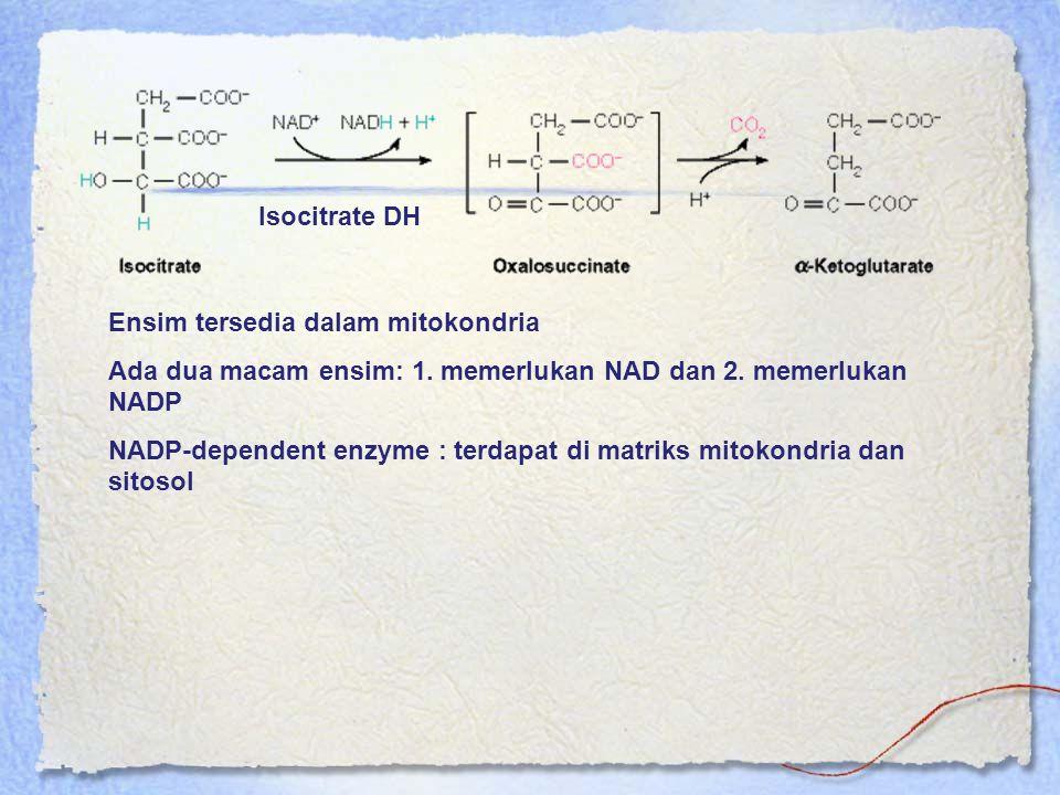 Isocitrate DH Ensim tersedia dalam mitokondria Ada dua macam ensim: 1. memerlukan NAD dan 2. memerlukan NADP NADP-dependent enzyme : terdapat di matri