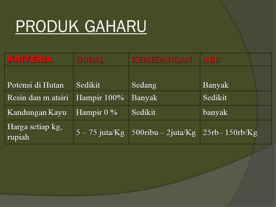 KLASIFIKASI GAHARU ABU GAHARU terdiri dari: Abu gaharu super, kemedangan A, dan Kemedangan TGC KEMEDANGAN terdiri dari : Kemedangan A, B, C, TGC Kemed