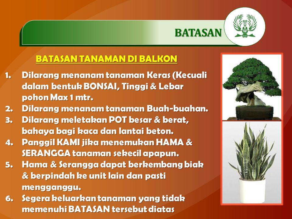 .…………… BATASAN BATASAN BATASAN TANAMAN DI BALKON 1.Dilarang menanam tanaman Keras (Kecuali dalam bentuk BONSAI, Tinggi & Lebar pohon Max 1 mtr.