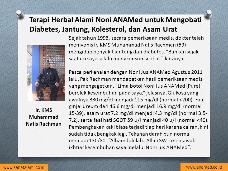 Terapi Herbal Alami Noni ANAMed untuk Mengobati Diabetes, Jantung, Kolesterol, dan Asam Urat Ir. KMS Muhammad Nafis Rachman Sejak tahun 1993, secara p