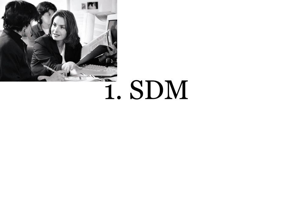 1. SDM