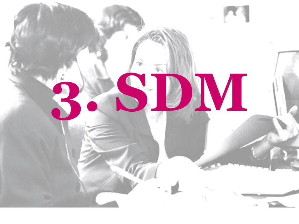 3. SDM