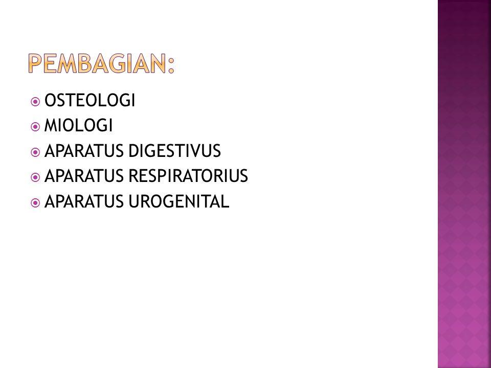  OSTEOLOGI  MIOLOGI  APARATUS DIGESTIVUS  APARATUS RESPIRATORIUS  APARATUS UROGENITAL