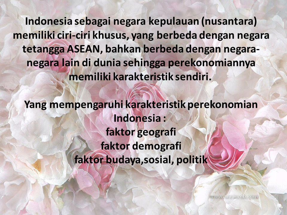 Indonesia sebagai negara kepulauan (nusantara) memiliki ciri-ciri khusus, yang berbeda dengan negara tetangga ASEAN, bahkan berbeda dengan negara- negara lain di dunia sehingga perekonomiannya memiliki karakteristik sendiri.