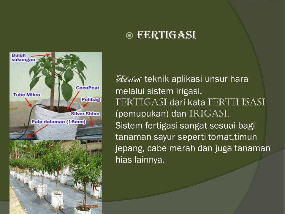 Adalah teknik aplikasi unsur hara melalui sistem irigasi. Fertigasi dari kata Fertilisasi (pemupukan) dan irigasi. Sistem fertigasi sangat sesuai bagi