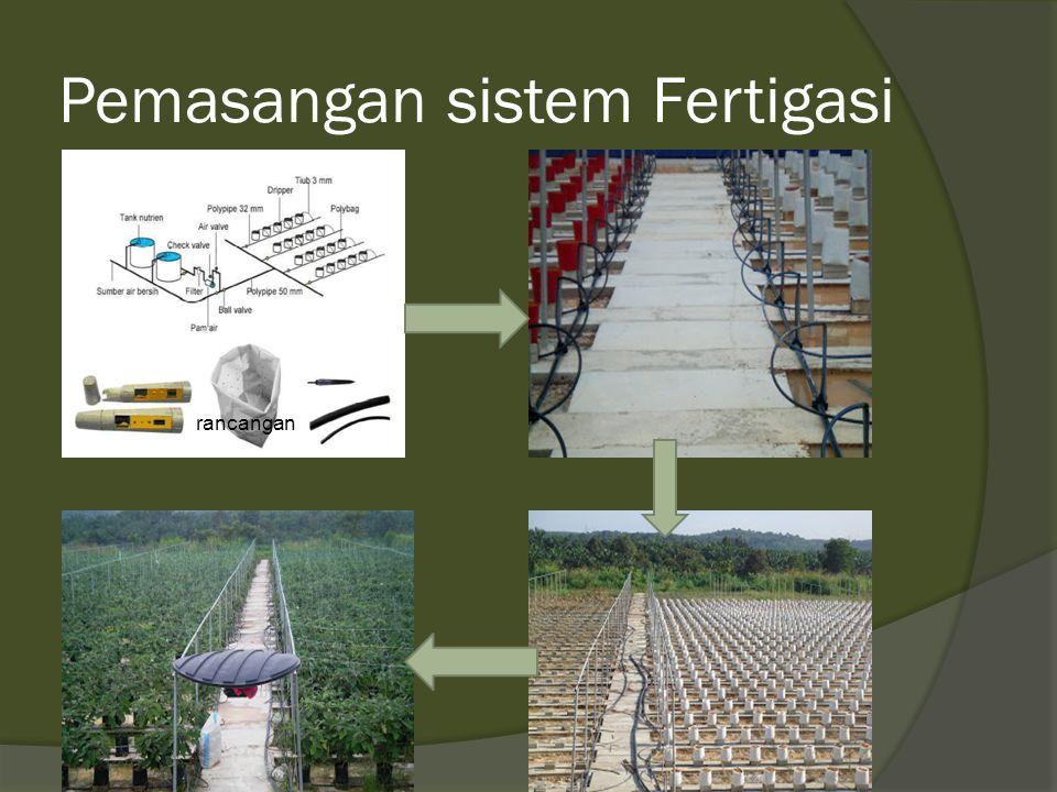 Pemasangan sistem Fertigasi rancangan