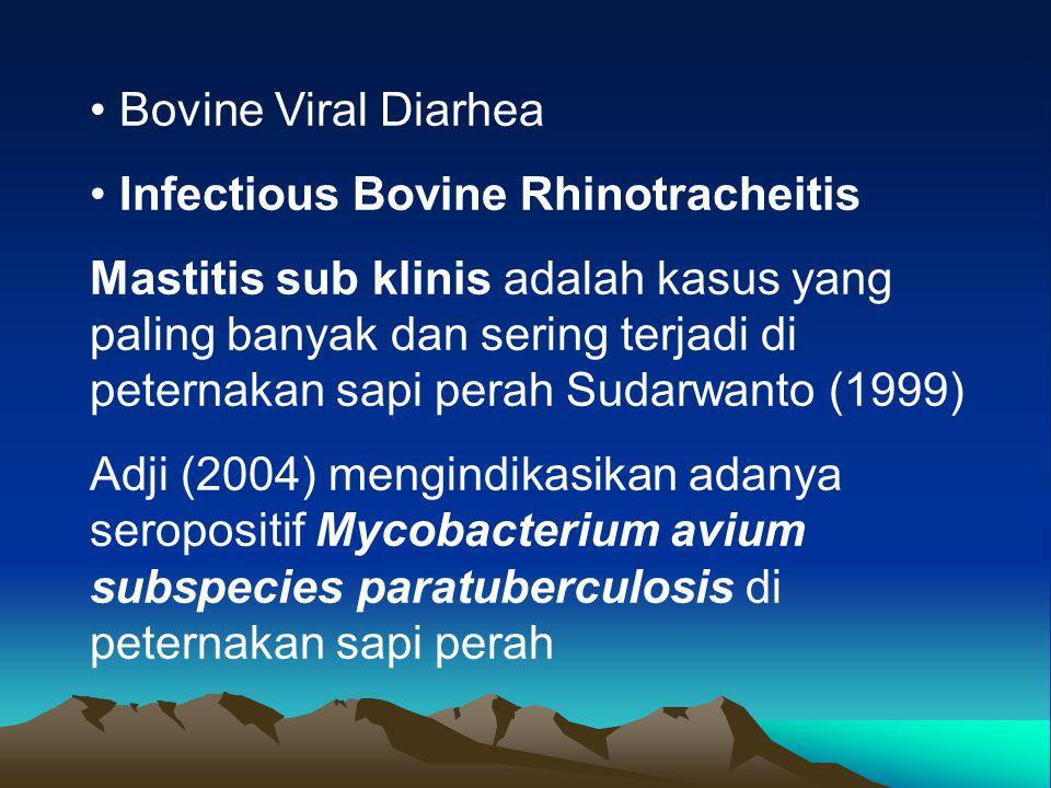 Bovine Viral Diarhea Infectious Bovine Rhinotracheitis Mastitis sub klinis adalah kasus yang paling banyak dan sering terjadi di peternakan sapi perah