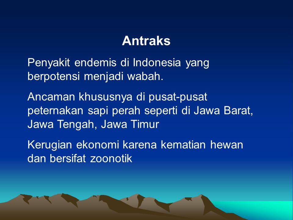 Antraks Penyakit endemis di Indonesia yang berpotensi menjadi wabah. Ancaman khususnya di pusat-pusat peternakan sapi perah seperti di Jawa Barat, Jaw