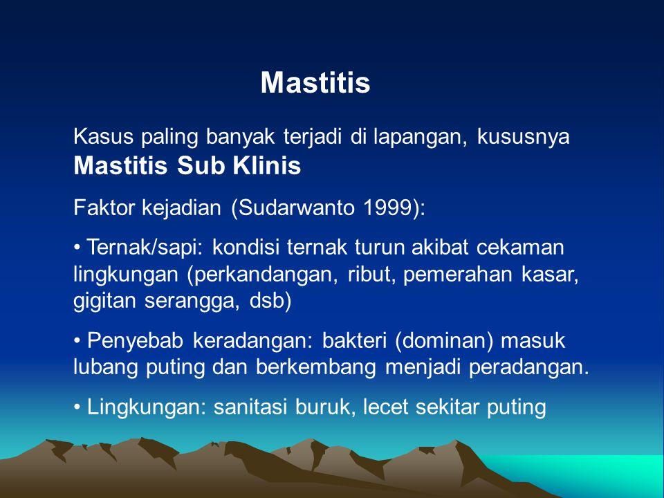 Mastitis Kasus paling banyak terjadi di lapangan, kususnya Mastitis Sub Klinis Faktor kejadian (Sudarwanto 1999): Ternak/sapi: kondisi ternak turun ak