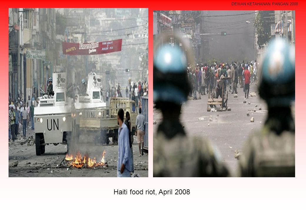 DEWAN KETAHANAN PANGAN 2008 Haiti food riot, April 2008