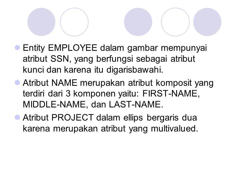 Entity EMPLOYEE dalam gambar mempunyai atribut SSN, yang berfungsi sebagai atribut kunci dan karena itu digarisbawahi. Atribut NAME merupakan atribut