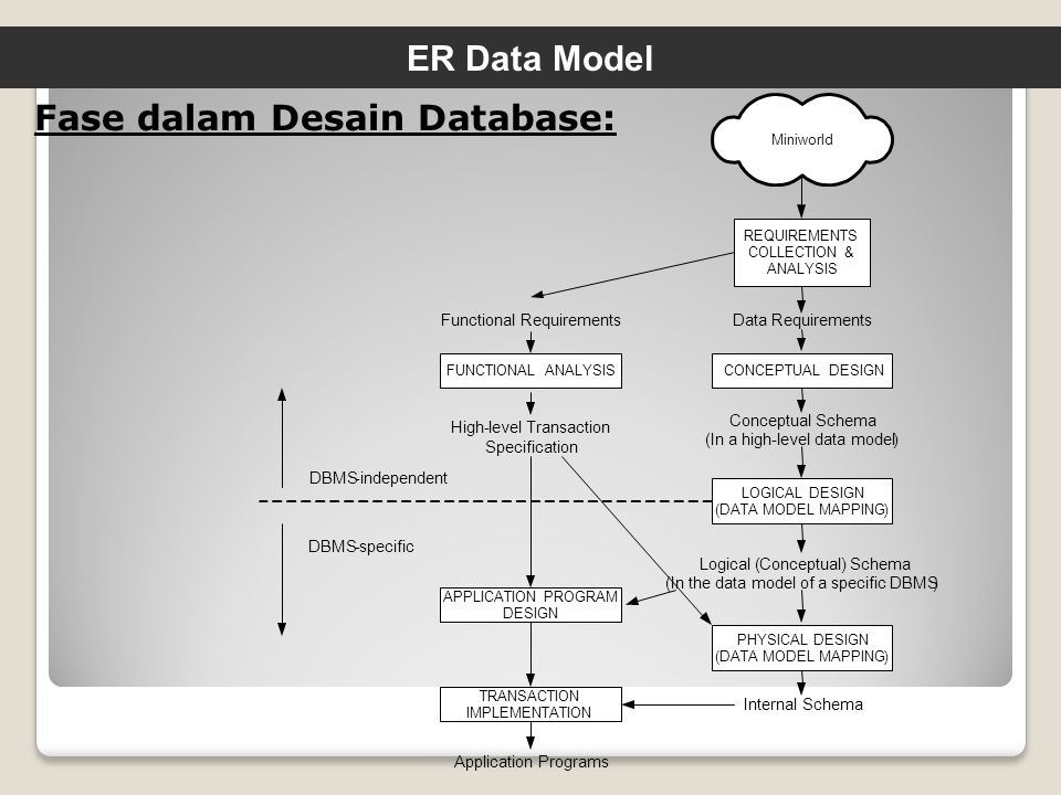 Fase dalam Desain Database: ER Data Model