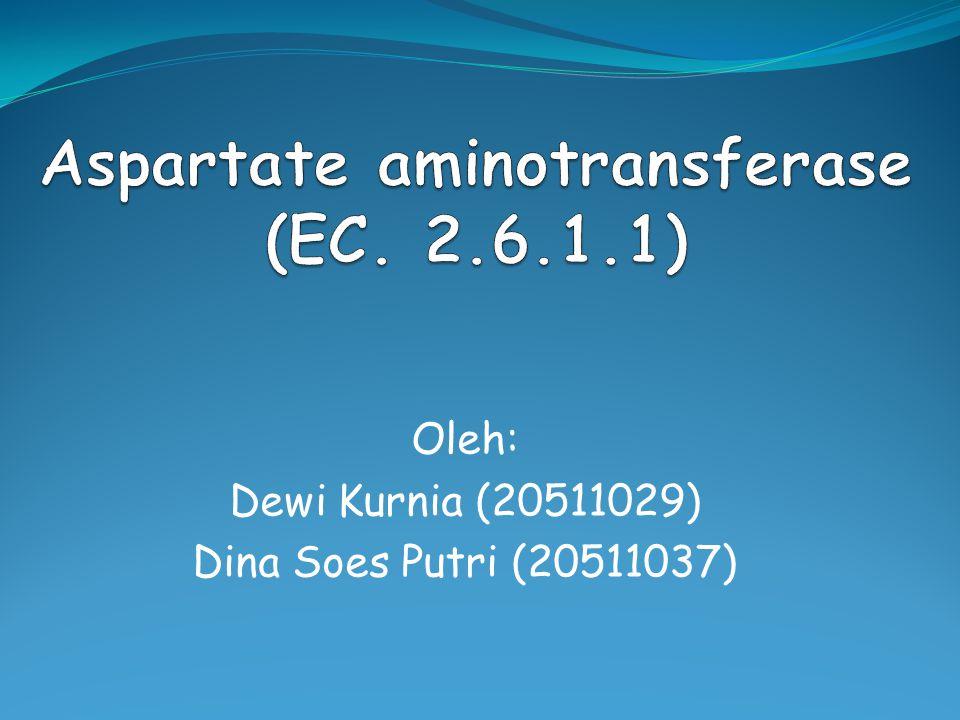 Oleh: Dewi Kurnia (20511029) Dina Soes Putri (20511037)