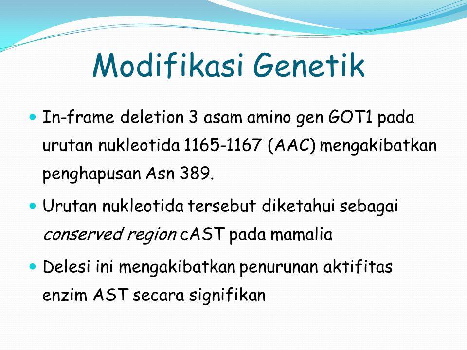 Modifikasi Genetik In-frame deletion 3 asam amino gen GOT1 pada urutan nukleotida 1165-1167 (AAC) mengakibatkan penghapusan Asn 389. Urutan nukleotida