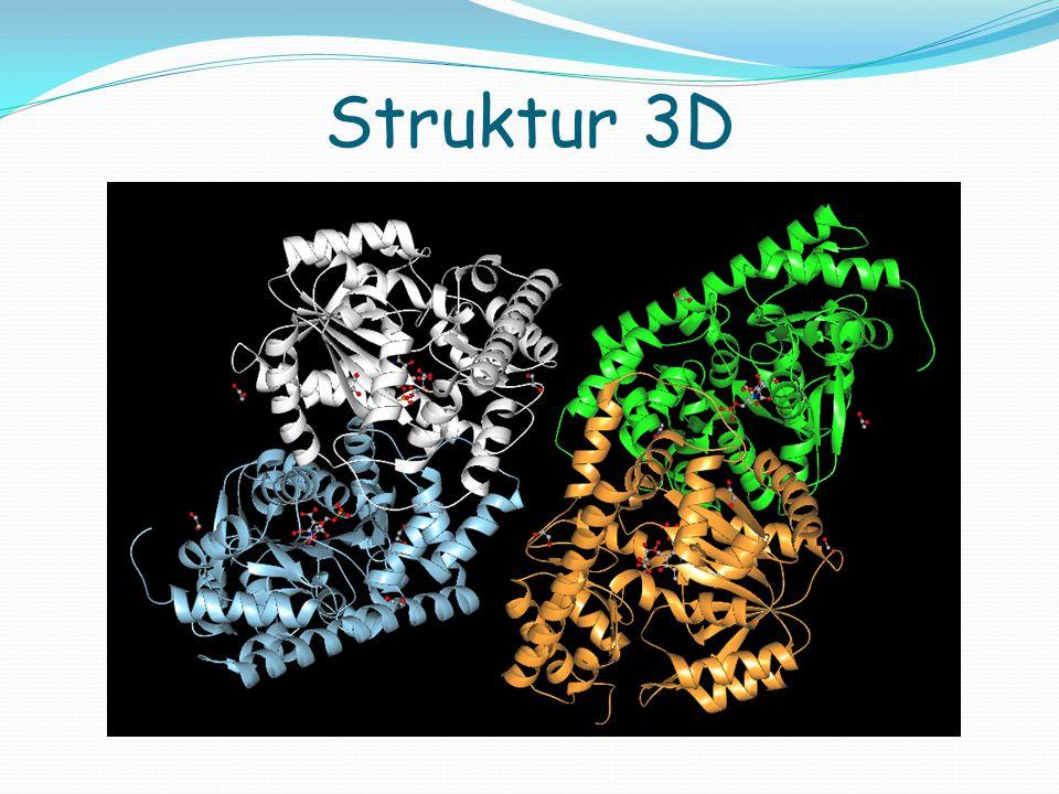 Struktur tiap subunit