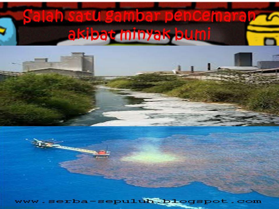 Salah satu gambar pencemaran akibat minyak bumi