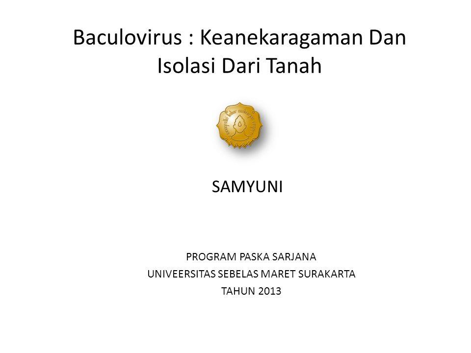 Baculovirus : Keanekaragaman Dan Isolasi Dari Tanah SAMYUNI PROGRAM PASKA SARJANA UNIVEERSITAS SEBELAS MARET SURAKARTA TAHUN 2013