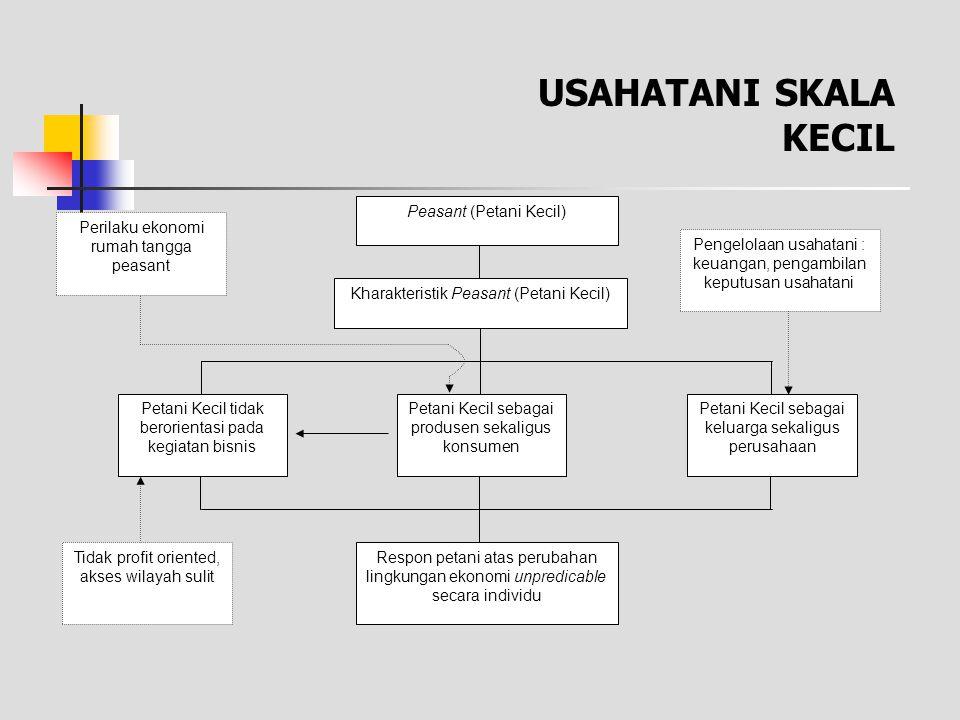 Model Usahatani Rumah-Tangga Chayanov 0 LmaxL 1e Y 2min YeYe TVP L Y 2min I1I1 I2I2 Labour days (L) Output/ Income Y B L 2e Y 1min A