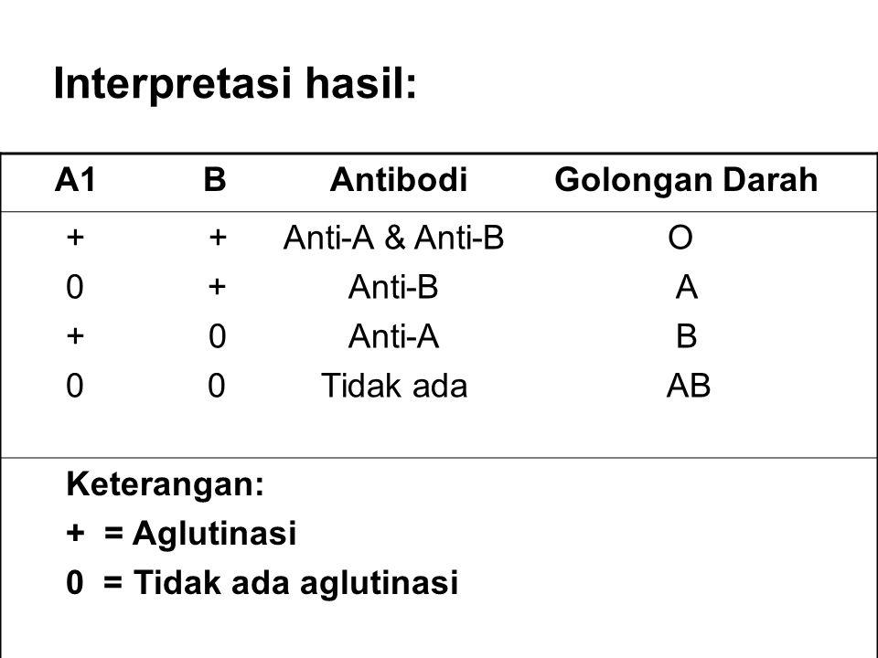 Interpretasi hasil: A1 B Antibodi Golongan Darah + + Anti-A & Anti-B O 0 + Anti-B A + 0 Anti-A B 0 0 Tidak ada AB Keterangan: + = Aglutinasi 0 = Tidak