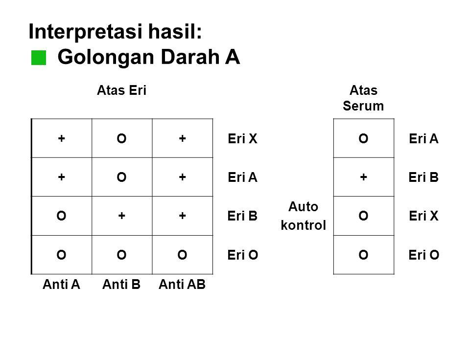 Interpretasi hasil: Golongan Darah A Atas EriAtas Serum +O+Eri XOEri A +O+ +Eri B O++ Auto kontrol OEri X OOOEri OO Anti AAnti BAnti AB
