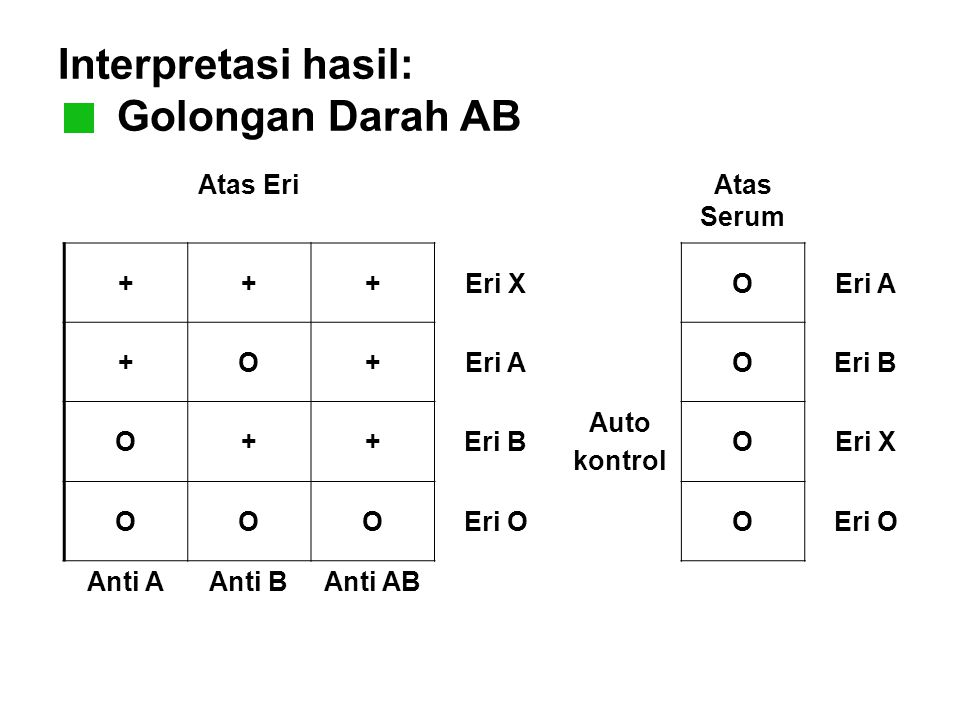 Interpretasi hasil: Golongan Darah AB Atas EriAtas Serum +++Eri XOEri A +O+ OEri B O++ Auto kontrol OEri X OOOEri OO Anti AAnti BAnti AB