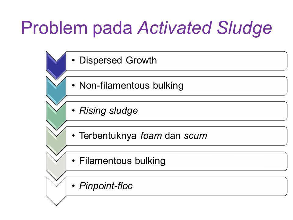 Problem pada Activated Sludge Dispersed GrowthNon-filamentous bulkingRising sludgeTerbentuknya foam dan scumFilamentous bulkingPinpoint-floc