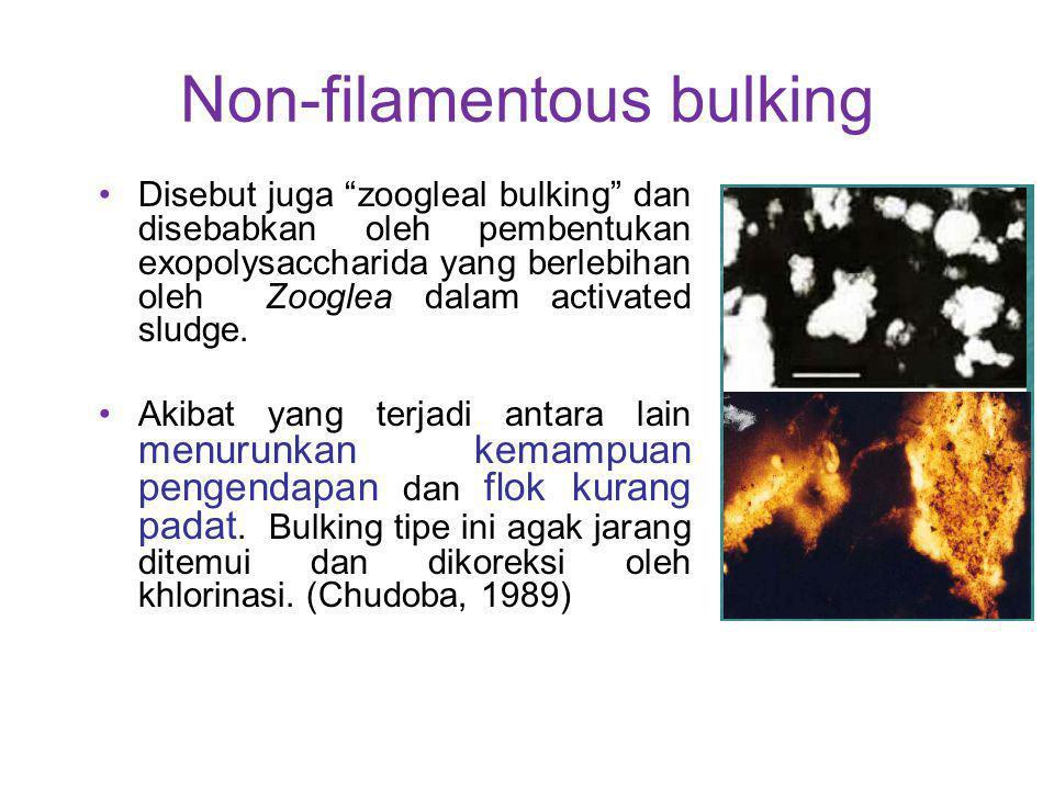 """Non-filamentous bulking Disebut juga """"zoogleal bulking"""" dan disebabkan oleh pembentukan exopolysaccharida yang berlebihan oleh Zooglea dalam activated"""
