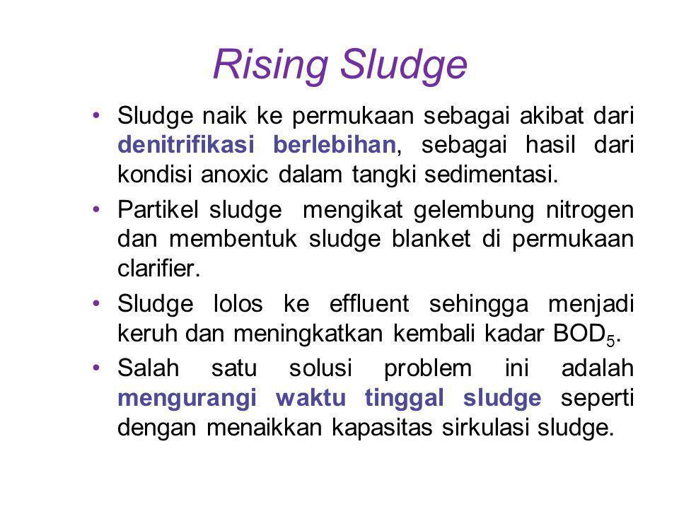 Rising Sludge Sludge naik ke permukaan sebagai akibat dari denitrifikasi berlebihan, sebagai hasil dari kondisi anoxic dalam tangki sedimentasi. Parti