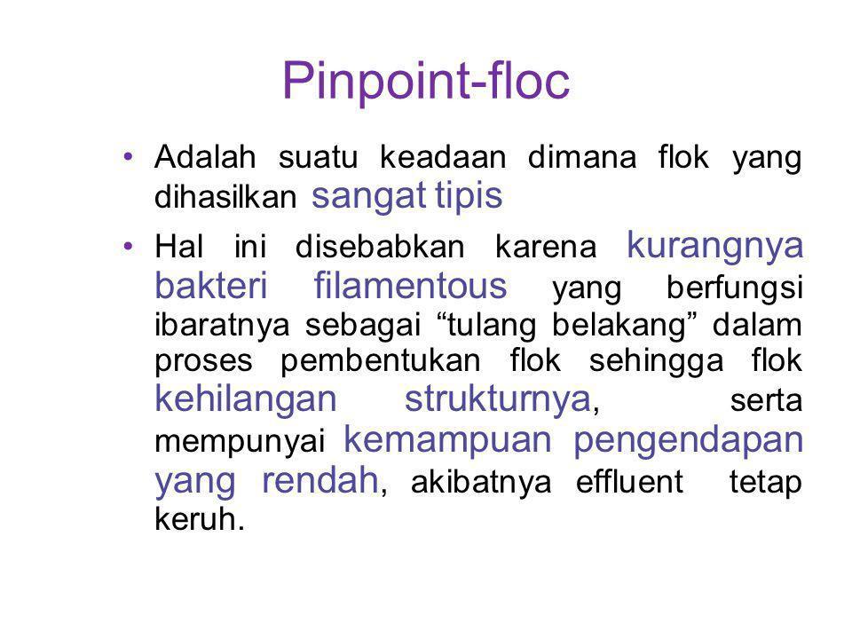 Pinpoint-floc Adalah suatu keadaan dimana flok yang dihasilkan sangat tipis Hal ini disebabkan karena kurangnya bakteri filamentous yang berfungsi iba