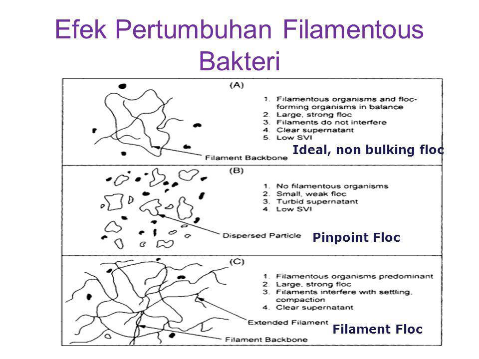 Efek Pertumbuhan Filamentous Bakteri Ideal, non bulking floc Pinpoint Floc Filament Floc