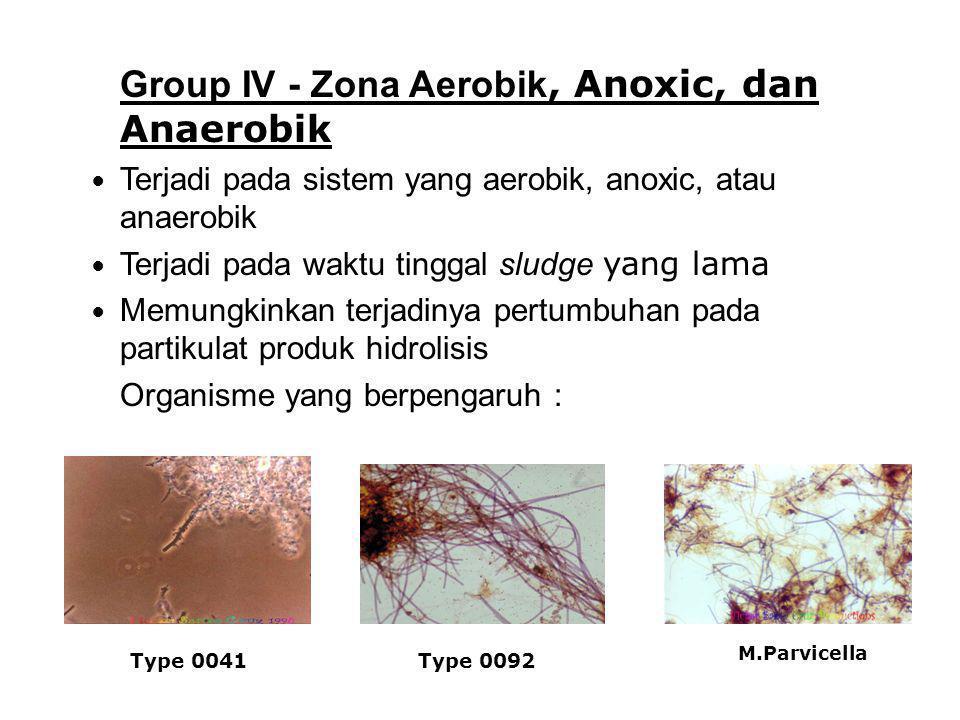 Group IV - Zona Aerobik, Anoxic, dan Anaerobik Terjadi pada sistem yang aerobik, anoxic, atau anaerobik Terjadi pada waktu tinggal sludge yang lama Me
