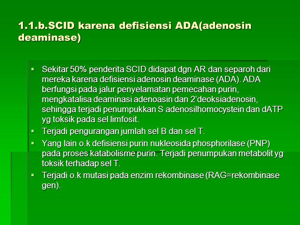 1.1.b.SCID karena defisiensi ADA(adenosin deaminase)  Sekitar 50% penderita SCID didapat dgn AR dan separoh dari mereka karena defisiensi adenosin de