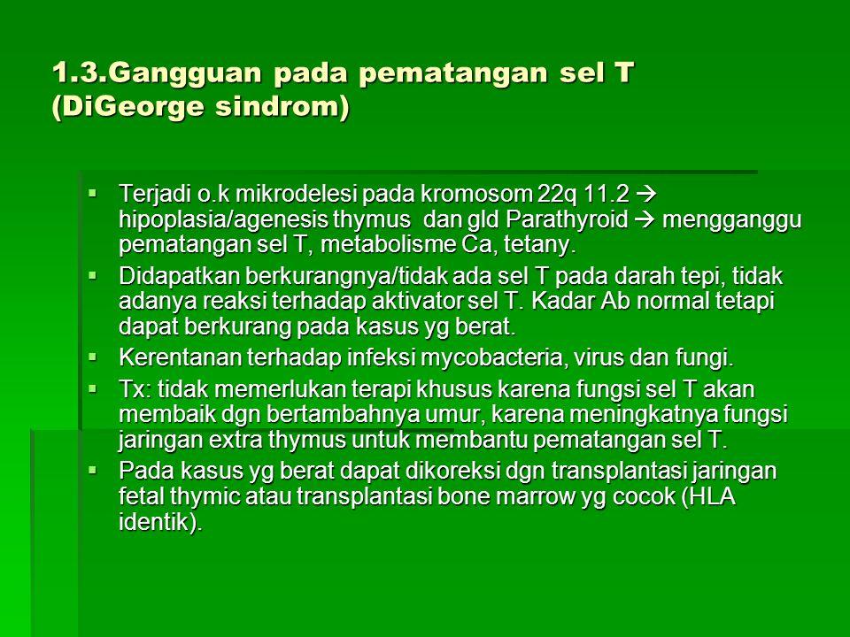 1.3.Gangguan pada pematangan sel T (DiGeorge sindrom)  Terjadi o.k mikrodelesi pada kromosom 22q 11.2  hipoplasia/agenesis thymus dan gld Parathyroid  mengganggu pematangan sel T, metabolisme Ca, tetany.