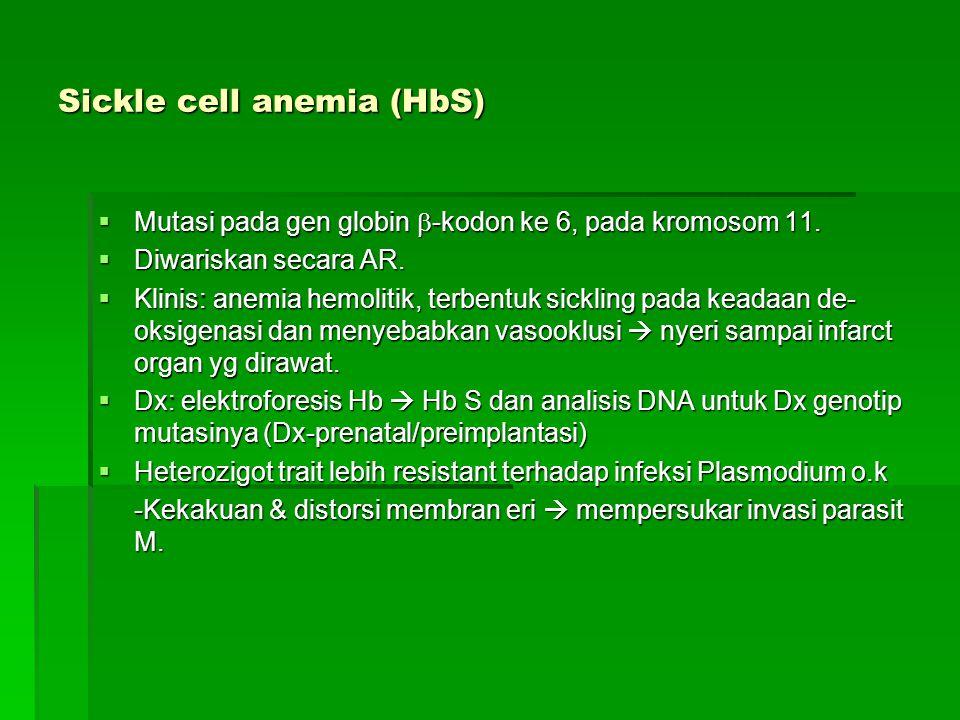 Sickle cell anemia (HbS)  Mutasi pada gen globin  -kodon ke 6, pada kromosom 11.  Diwariskan secara AR.  Klinis: anemia hemolitik, terbentuk sickl